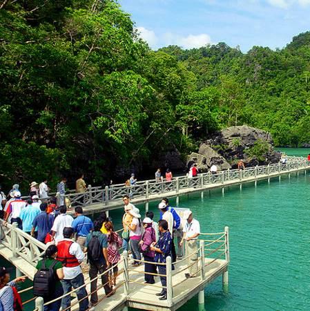 Sharing Tour Langkawi Mangrove